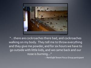 coackroach-slide